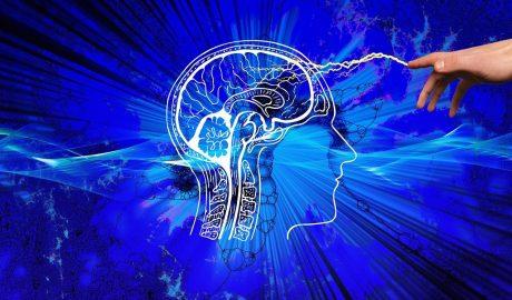 améliorer les facultés cognitives