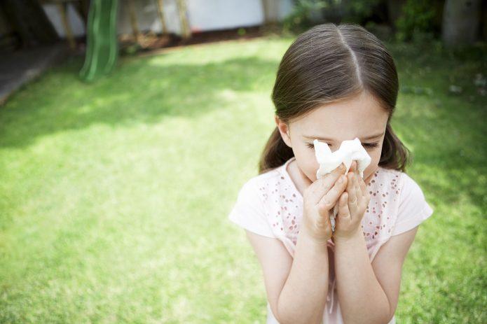 rhume des foins et allergie